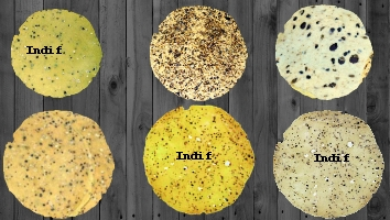 Appetizers - Papad