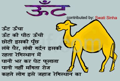 about camel in hindi